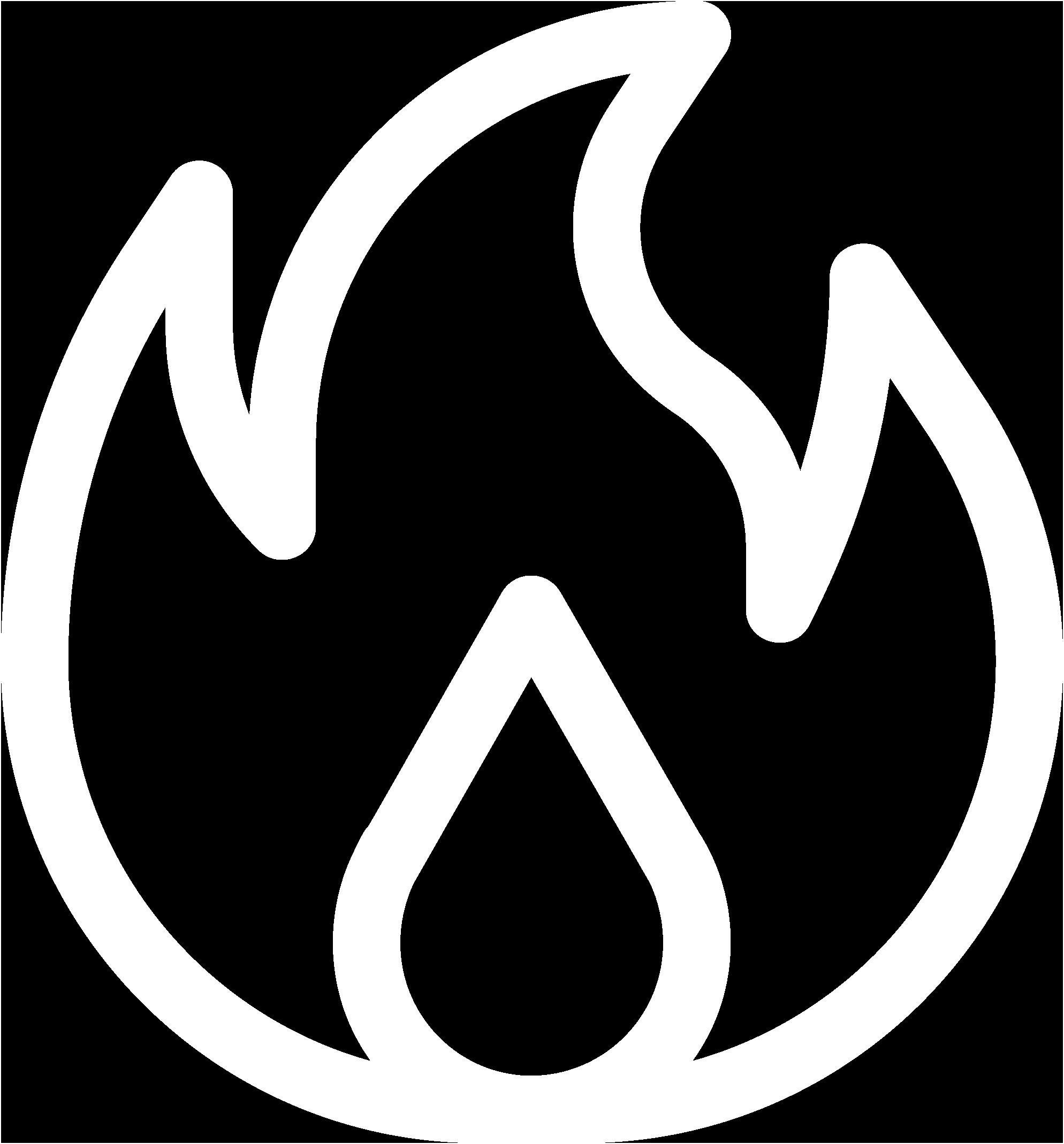 Frie & Smoke damage