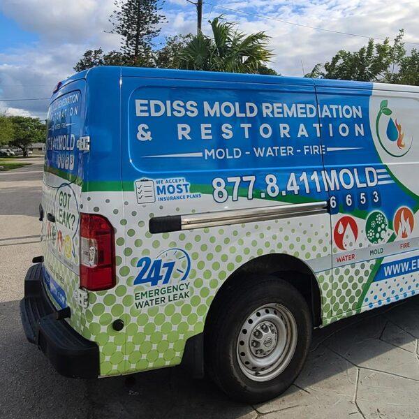 Ediss Mold Remediation